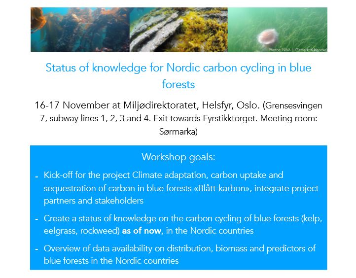 Workshop On The Status Of Nordic Carbon Cycling In Blue Forests